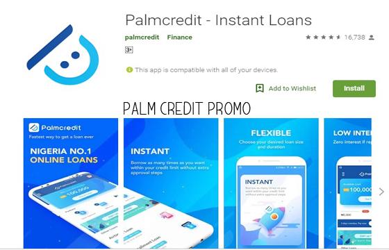 Palm Credit